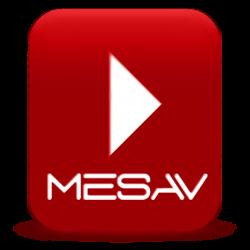 La MESAV i el Comité d'Empresa RTVV