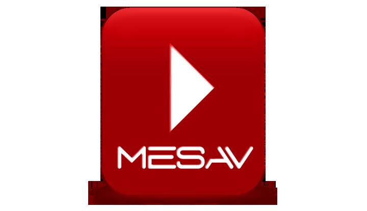 Acte de presentació de la MESAV